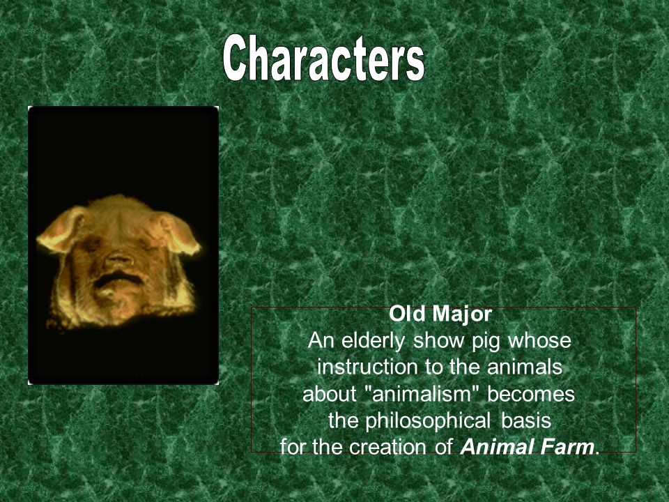 Characters Old Major An elderly show pig whose