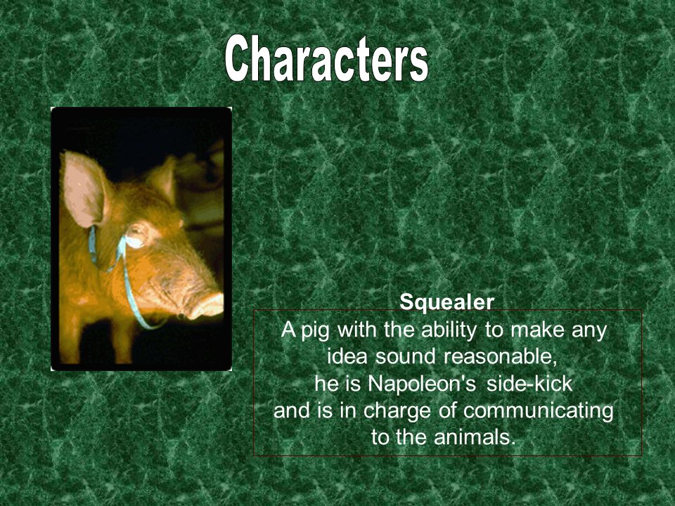 Characters Squealer A pig with the ability to make any