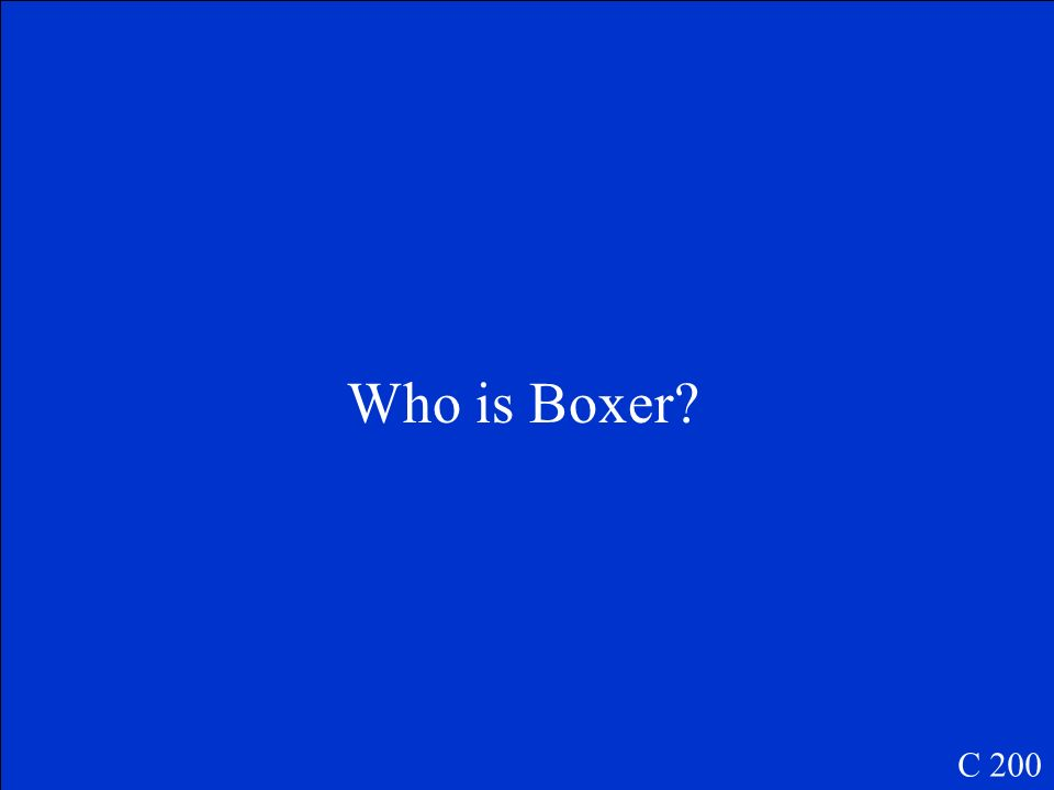 Who is Boxer C 200
