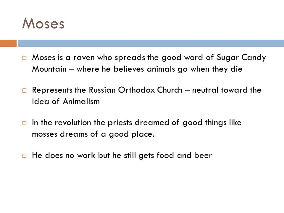Moses Moses is a raven who spreads the good word of Sugar Candy Mountain – where he believes animals go when they die.