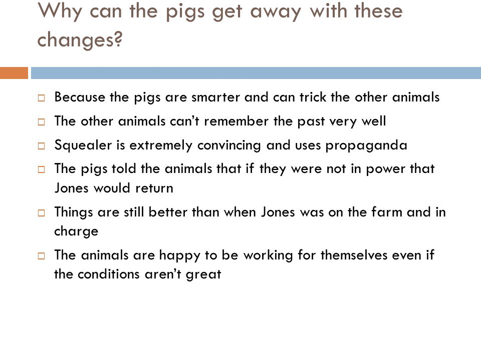 Why can the pigs get away with these changes
