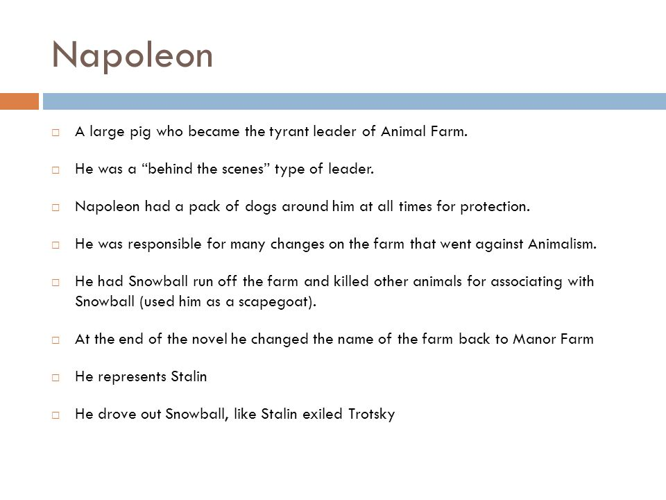 Napoleon A large pig who became the tyrant leader of Animal Farm.