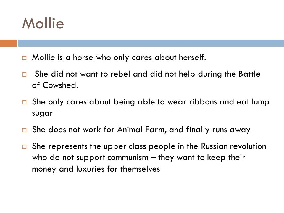 Mollie Mollie is a horse who only cares about herself.