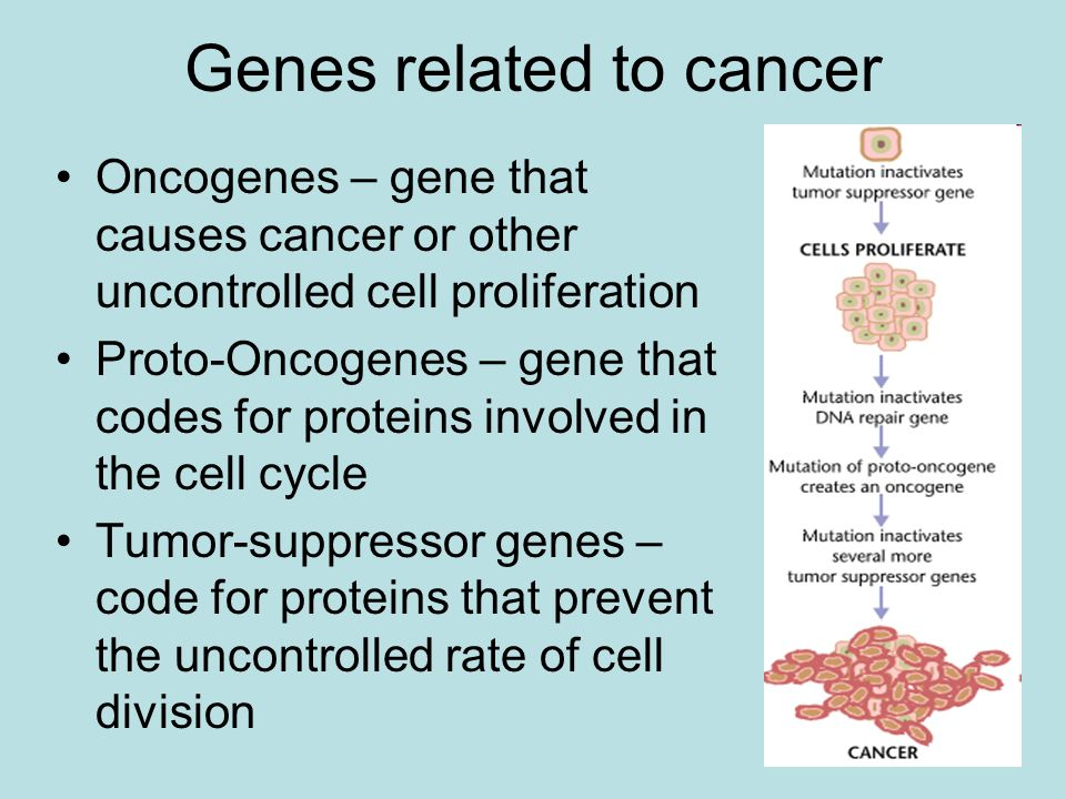 Genes related to cancer