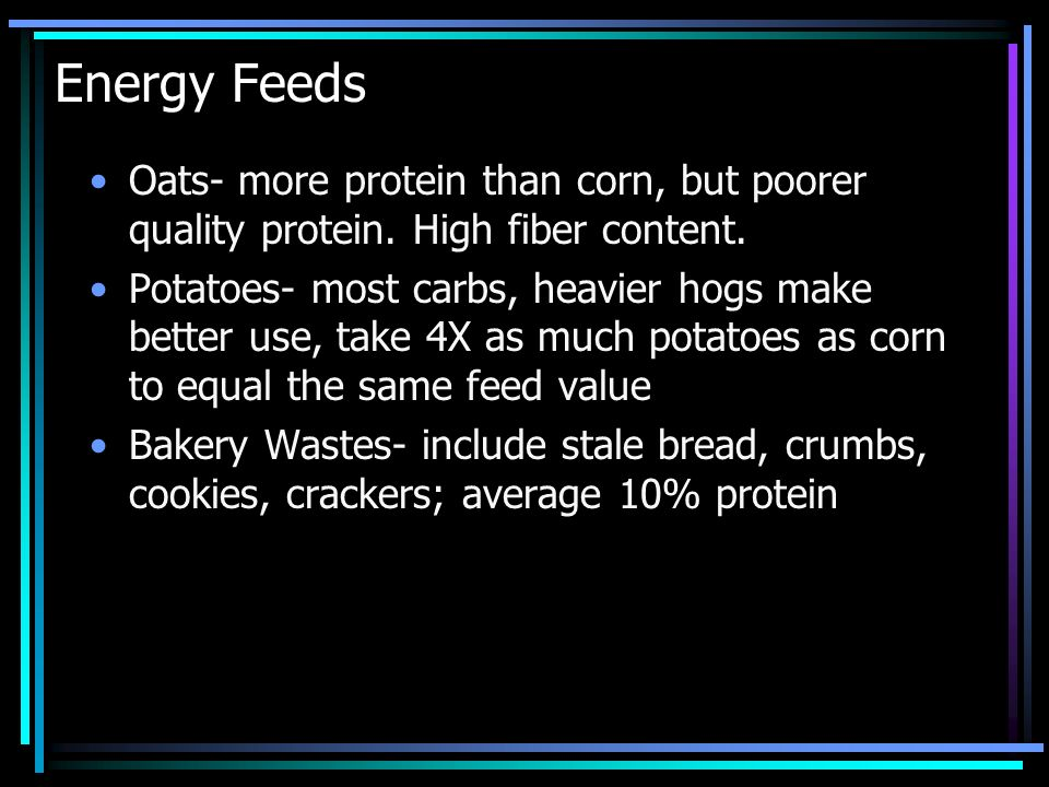 Energy Feeds Oats- more protein than corn, but poorer quality protein. High fiber content.