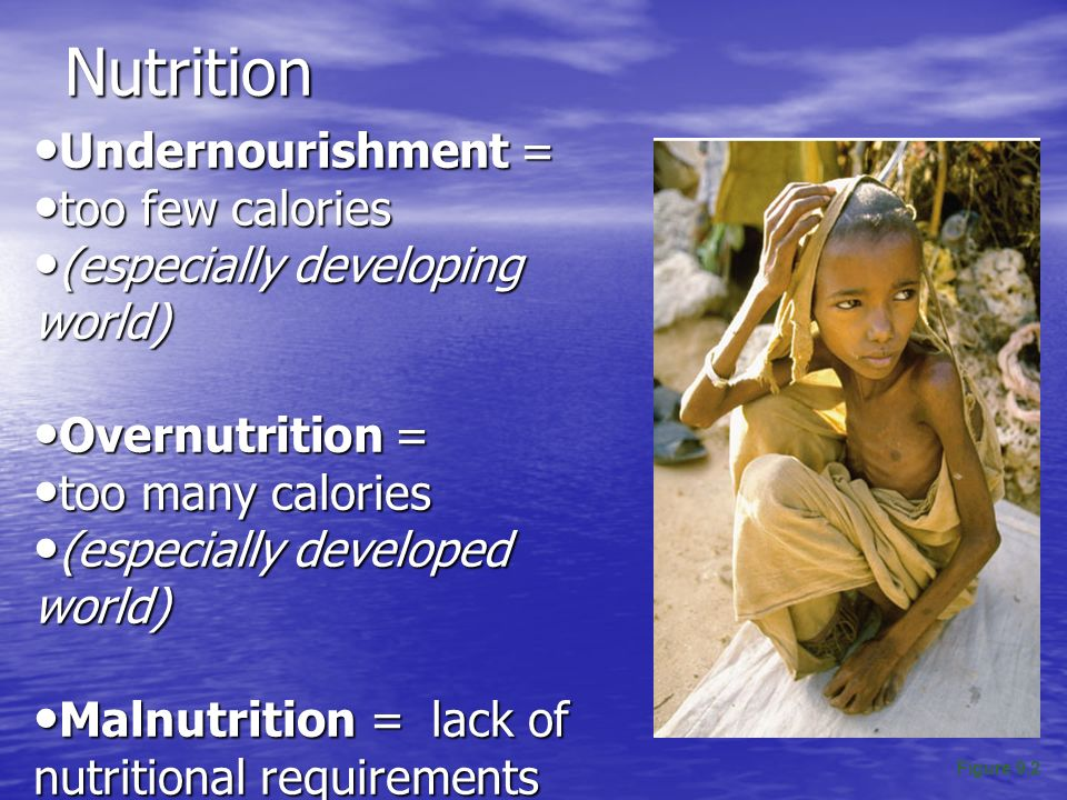 Nutrition Undernourishment = too few calories