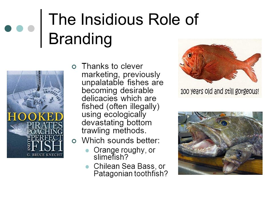 The Insidious Role of Branding