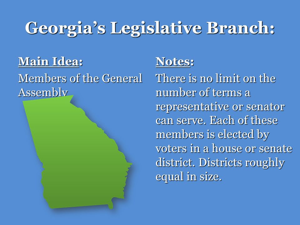 Georgia's Legislative Branch: