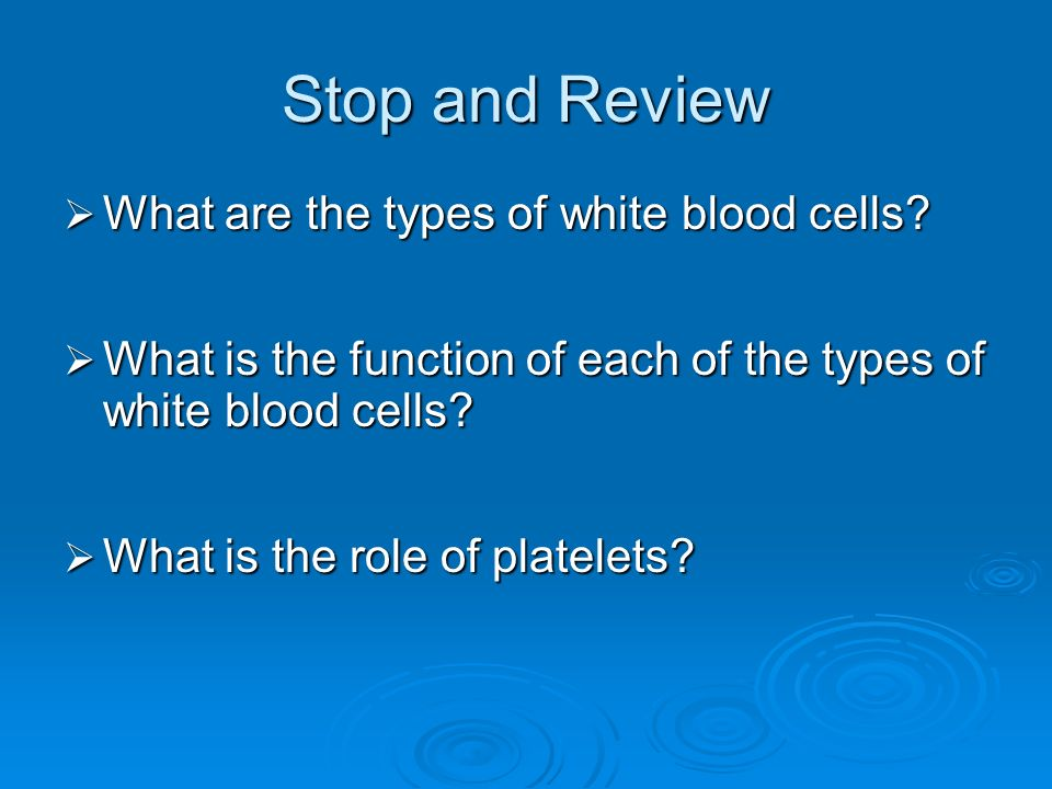 Stop and Review What are the types of white blood cells