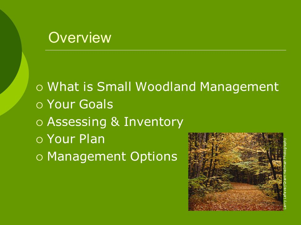 Overview What is Small Woodland Management Your Goals
