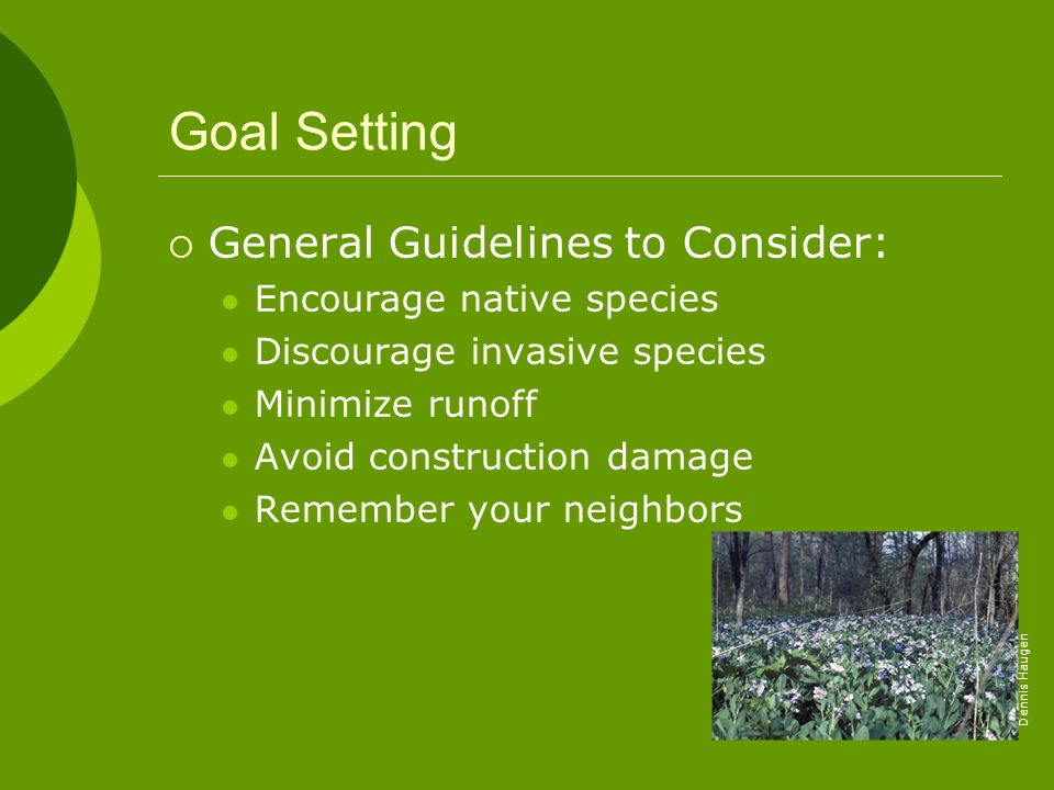Goal Setting General Guidelines to Consider: Encourage native species