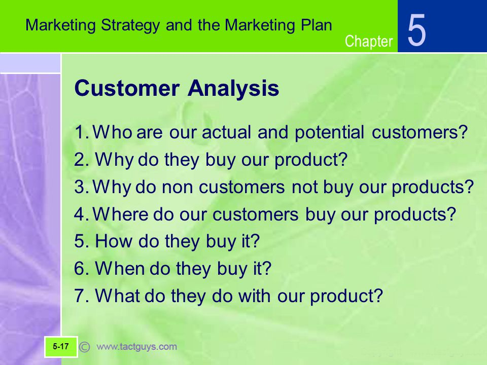5 Customer Analysis 1. Who are our actual and potential customers
