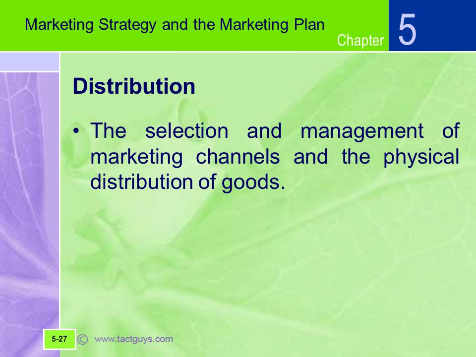 5 Marketing Strategy and the Marketing Plan. Distribution.