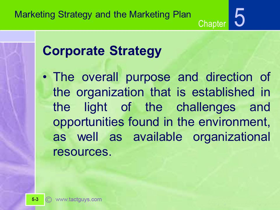 5 Marketing Strategy and the Marketing Plan. Corporate Strategy.