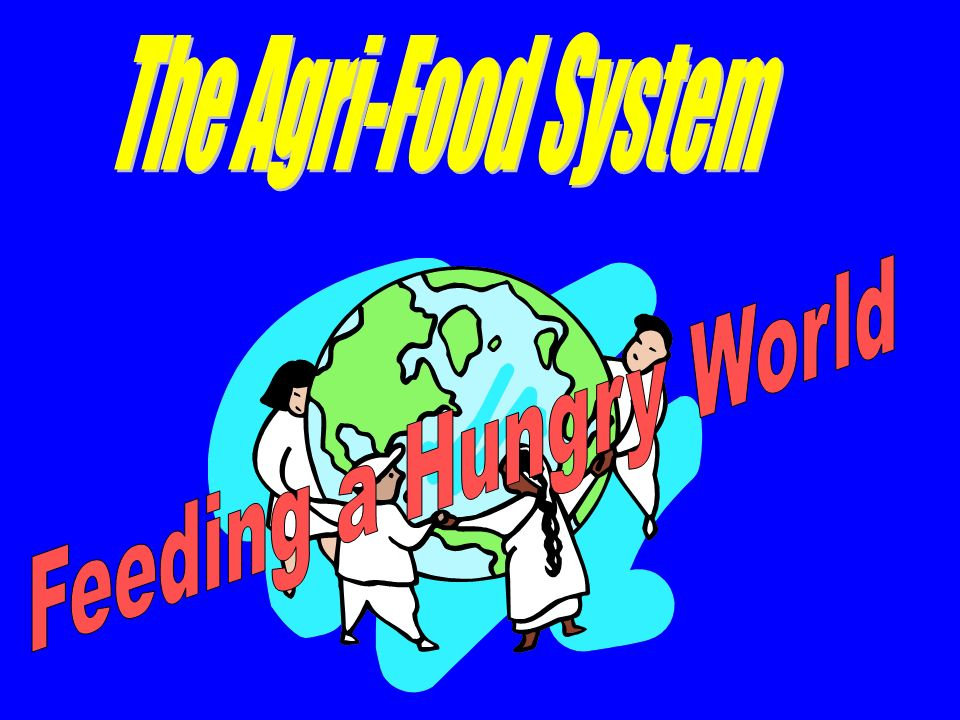 The Agri-Food System Feeding a Hungry World