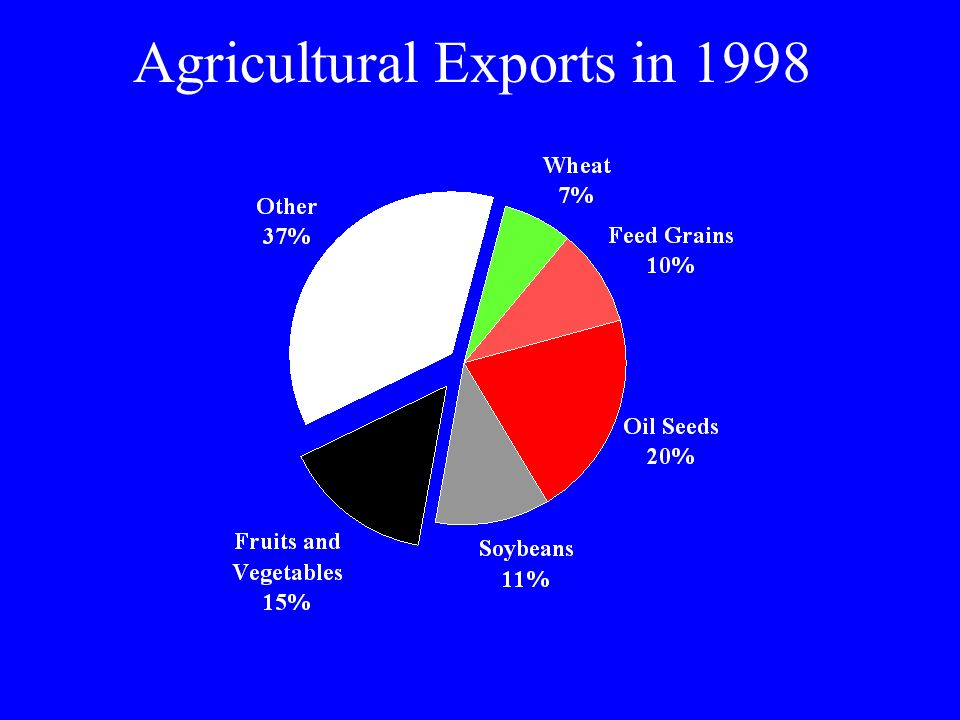 Agricultural Exports in 1998