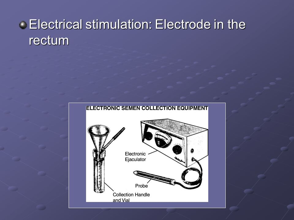 Electrical stimulation: Electrode in the rectum