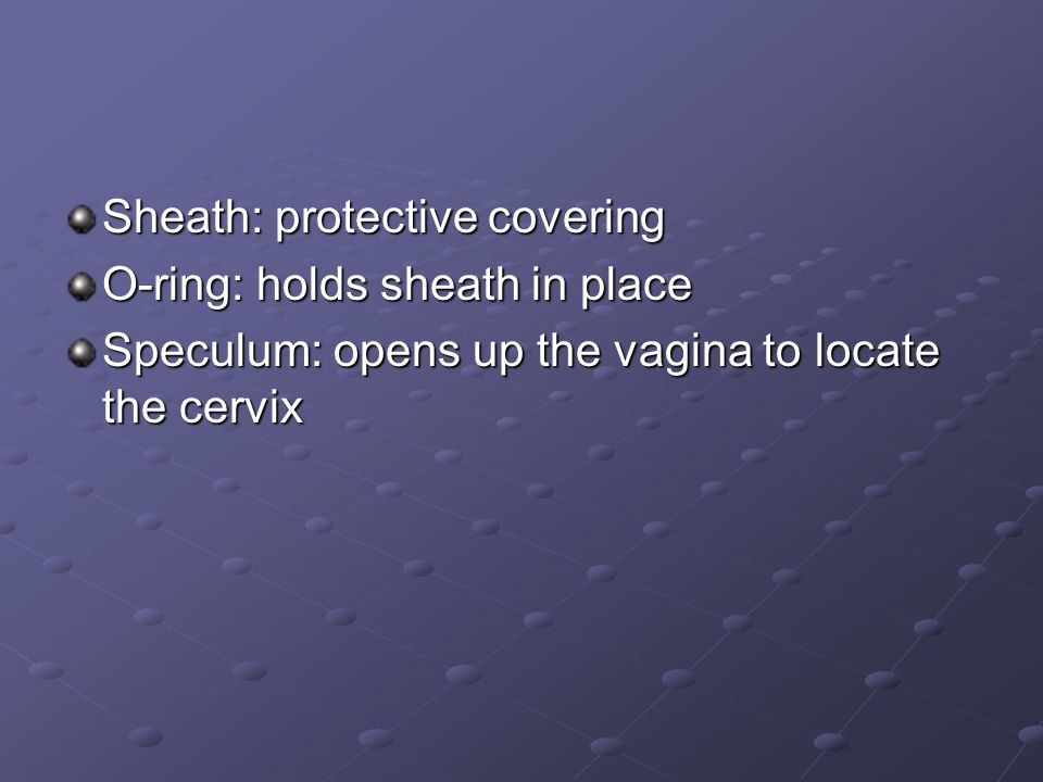 Sheath: protective covering