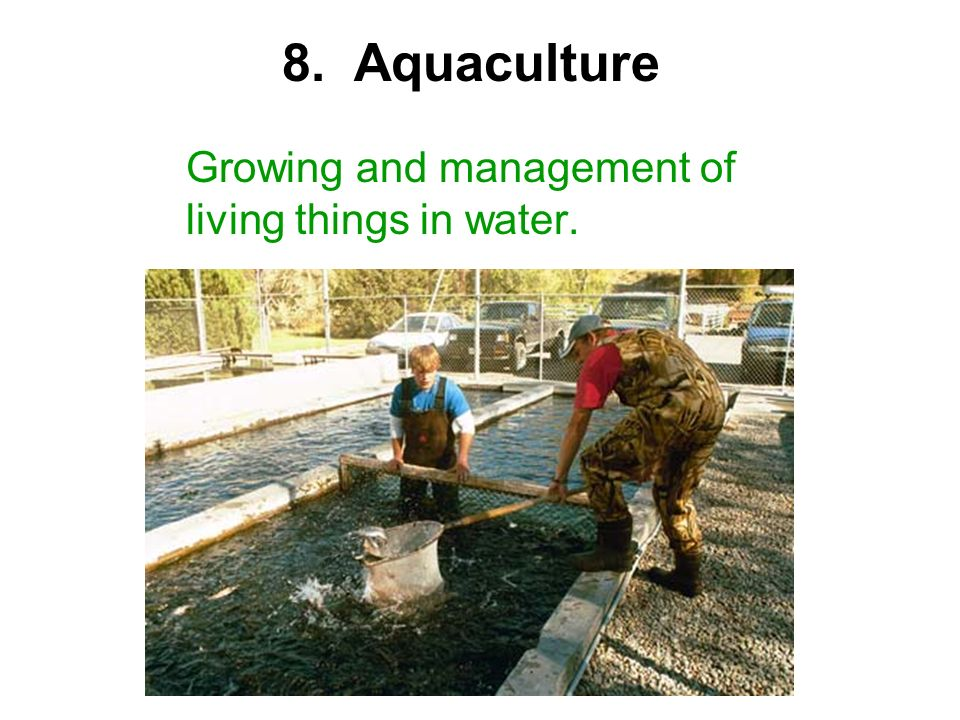 8. Aquaculture Growing and management of living things in water.