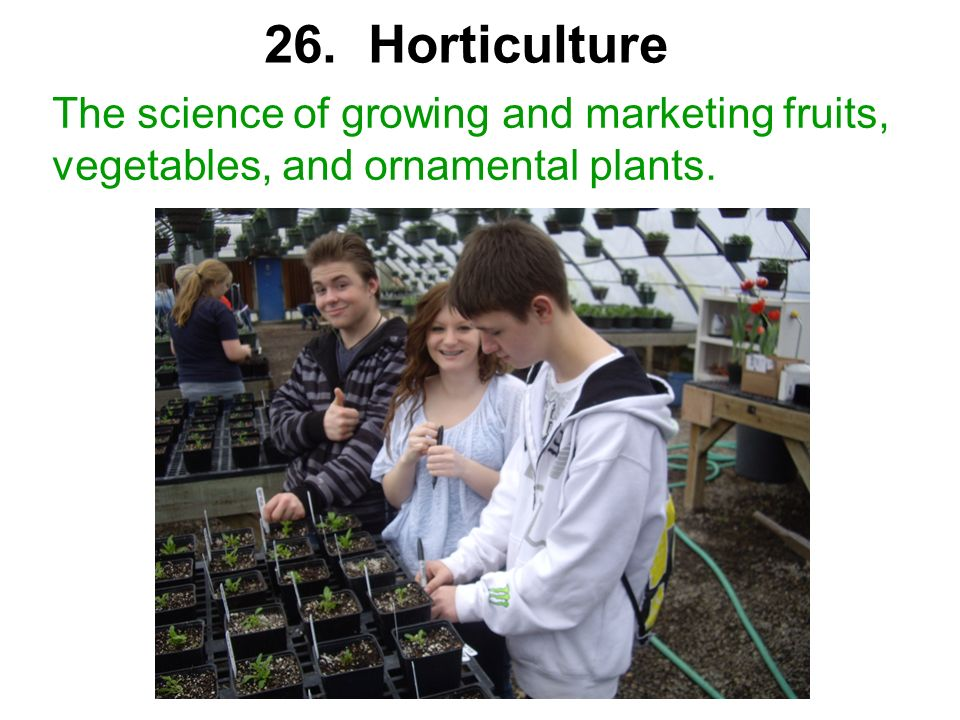 26. Horticulture The science of growing and marketing fruits, vegetables, and ornamental plants.