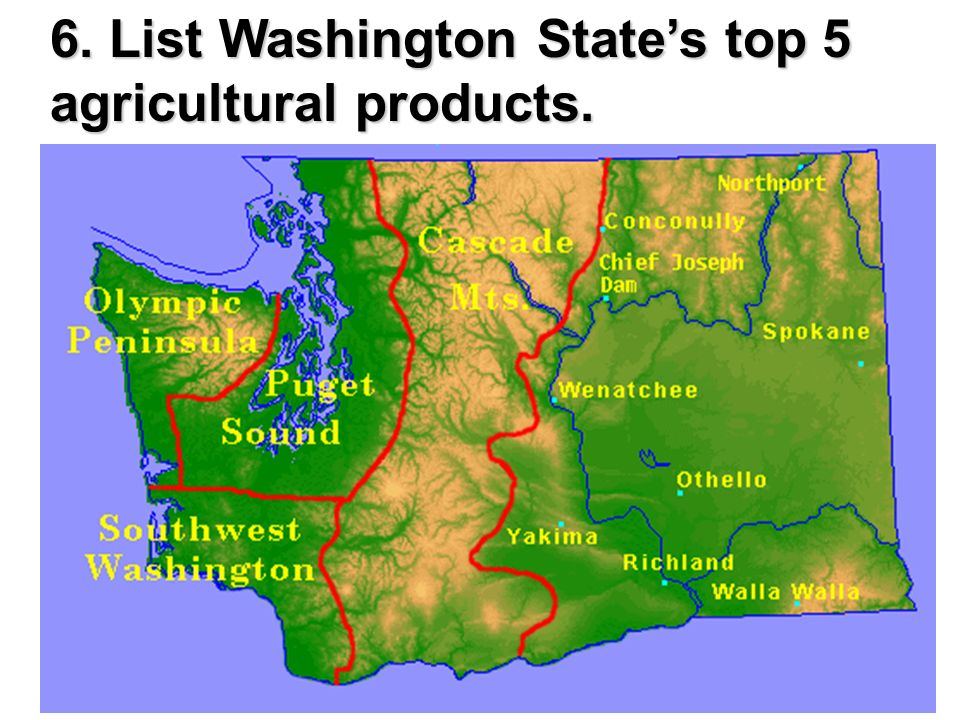6. List Washington State's top 5 agricultural products.
