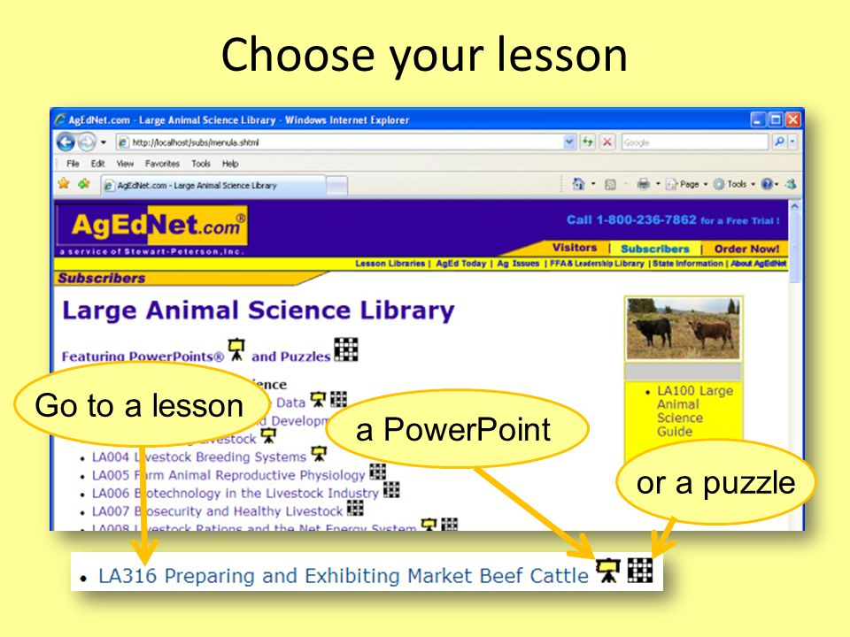 Choose your lesson Go to a lesson a PowerPoint or a puzzle