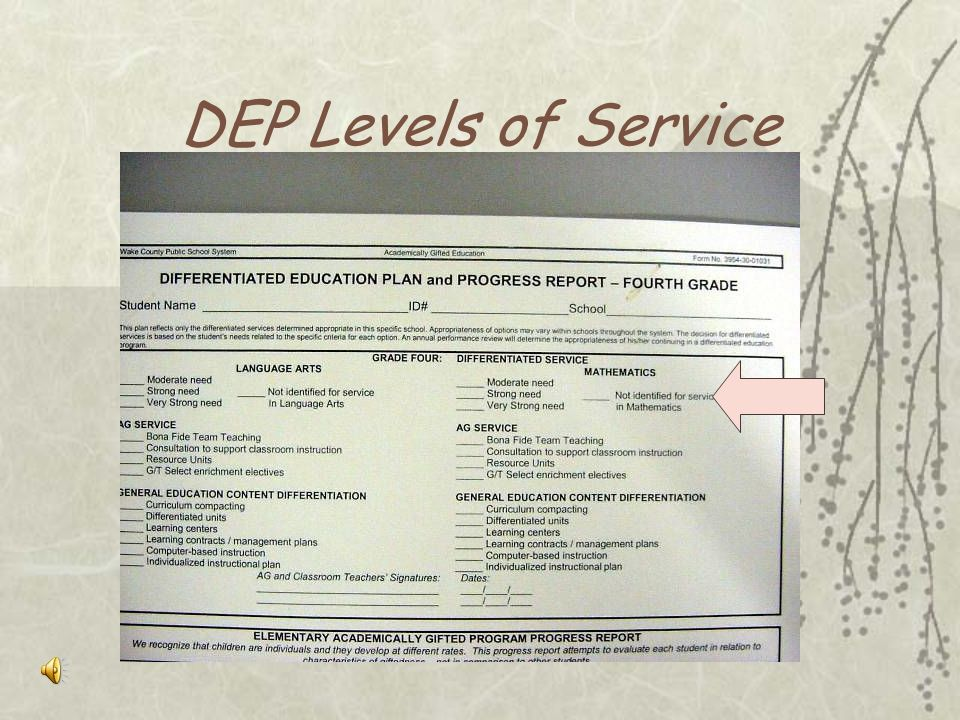 DEP Levels of Service