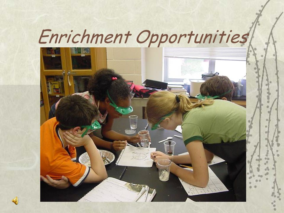 Enrichment Opportunities