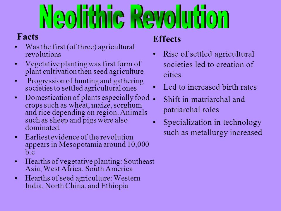 Neolithic Revolution Facts Effects