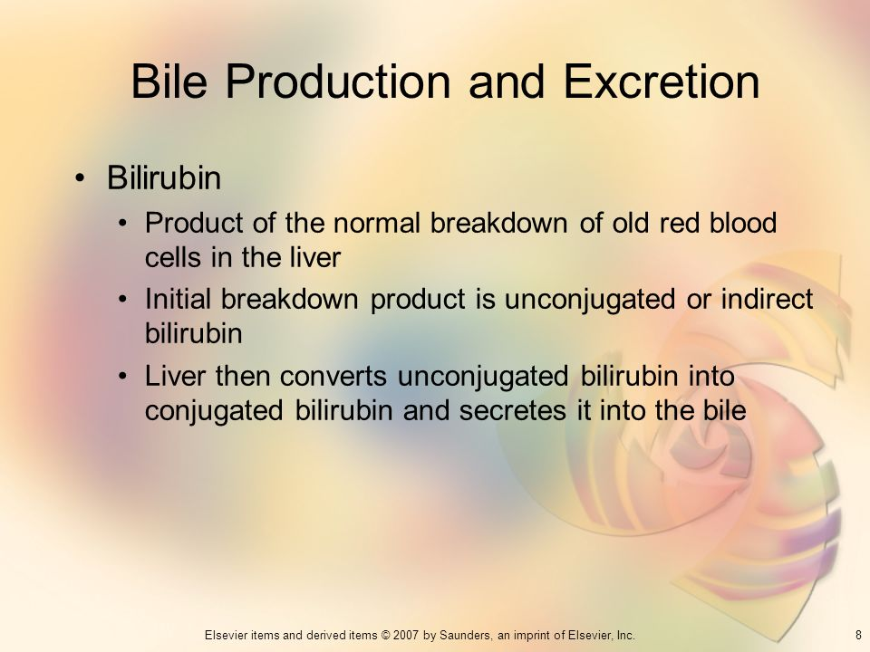 Bile Production and Excretion