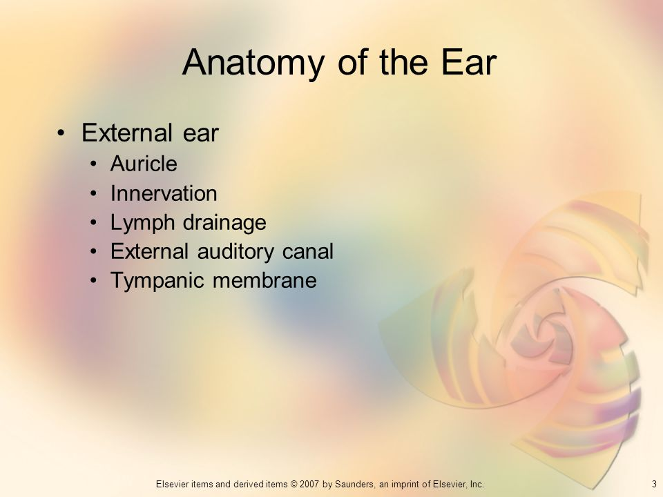 Anatomy of the Ear External ear Auricle Innervation Lymph drainage