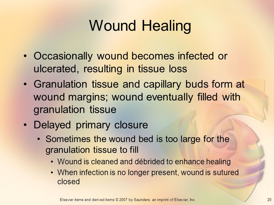 Wound Healing Occasionally wound becomes infected or ulcerated, resulting in tissue loss.
