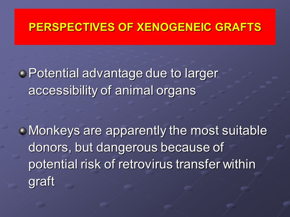 PERSPECTIVES OF XENOGENEIC GRAFTS