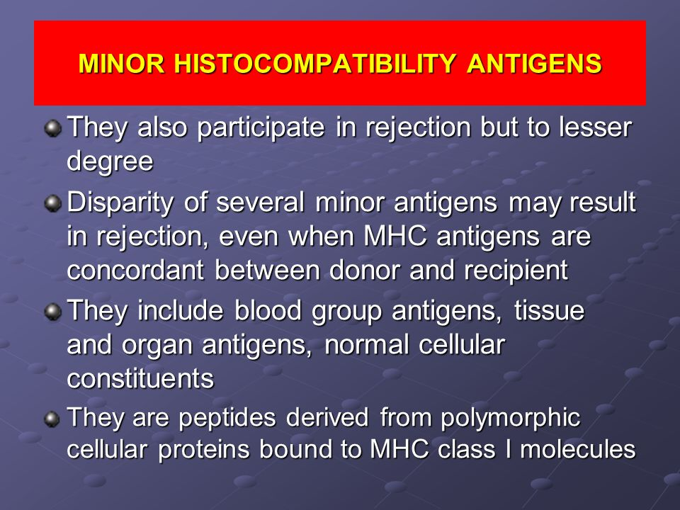MINOR HISTOCOMPATIBILITY ANTIGENS