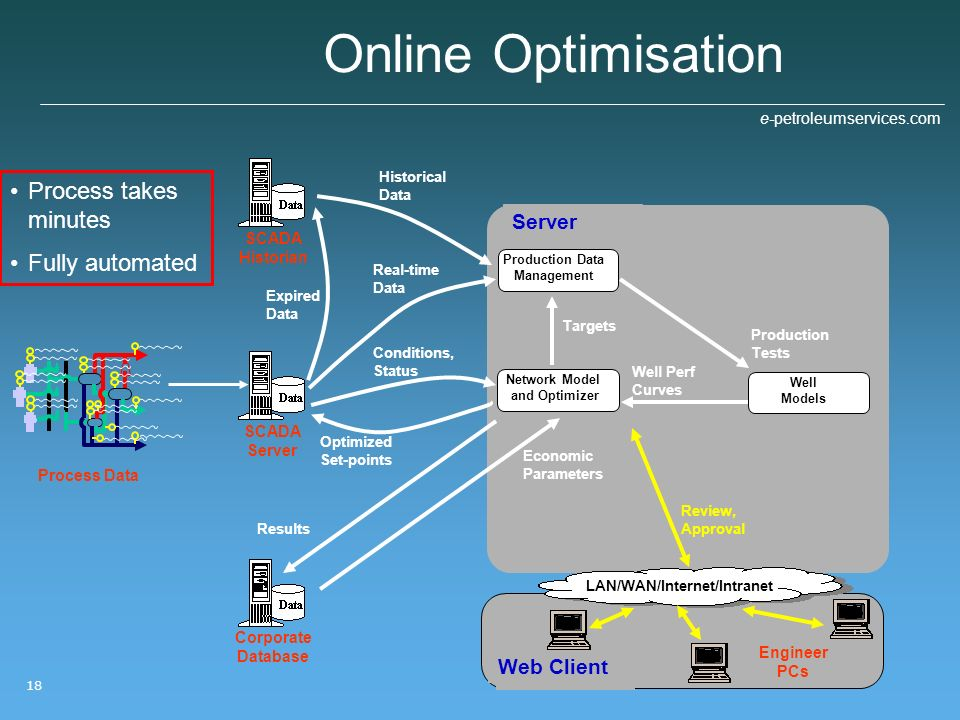 Network Model and Optimizer