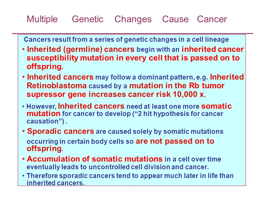 Multiple Genetic Changes Cause Cancer