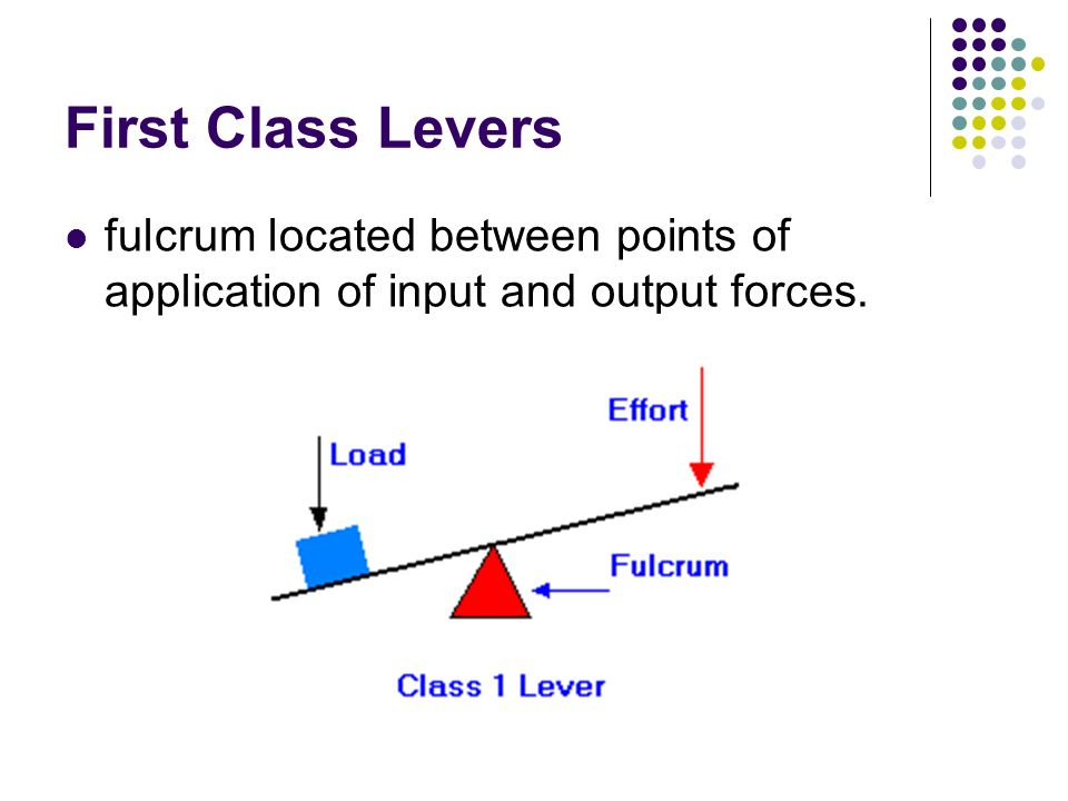 First Class Levers fulcrum located between points of application of input and output forces.