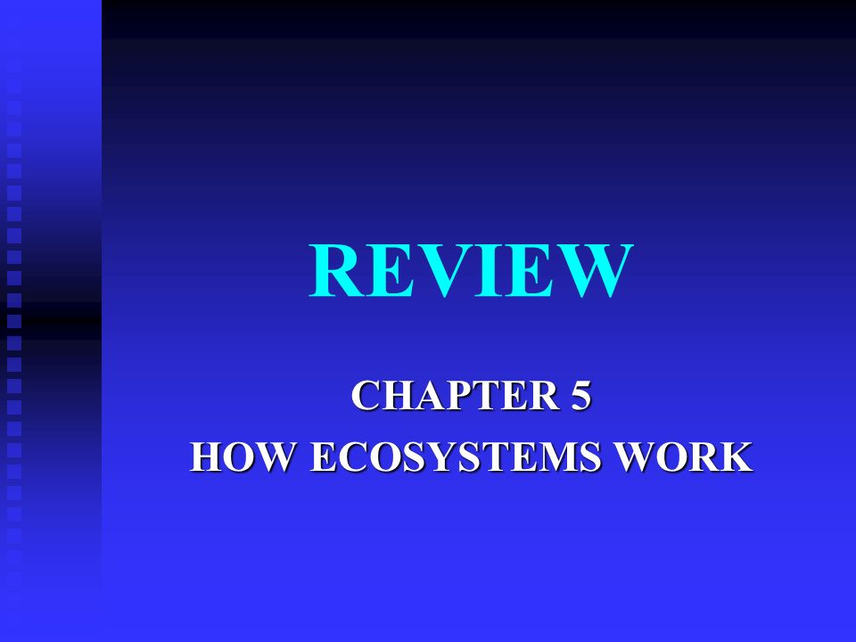 CHAPTER 5 HOW ECOSYSTEMS WORK