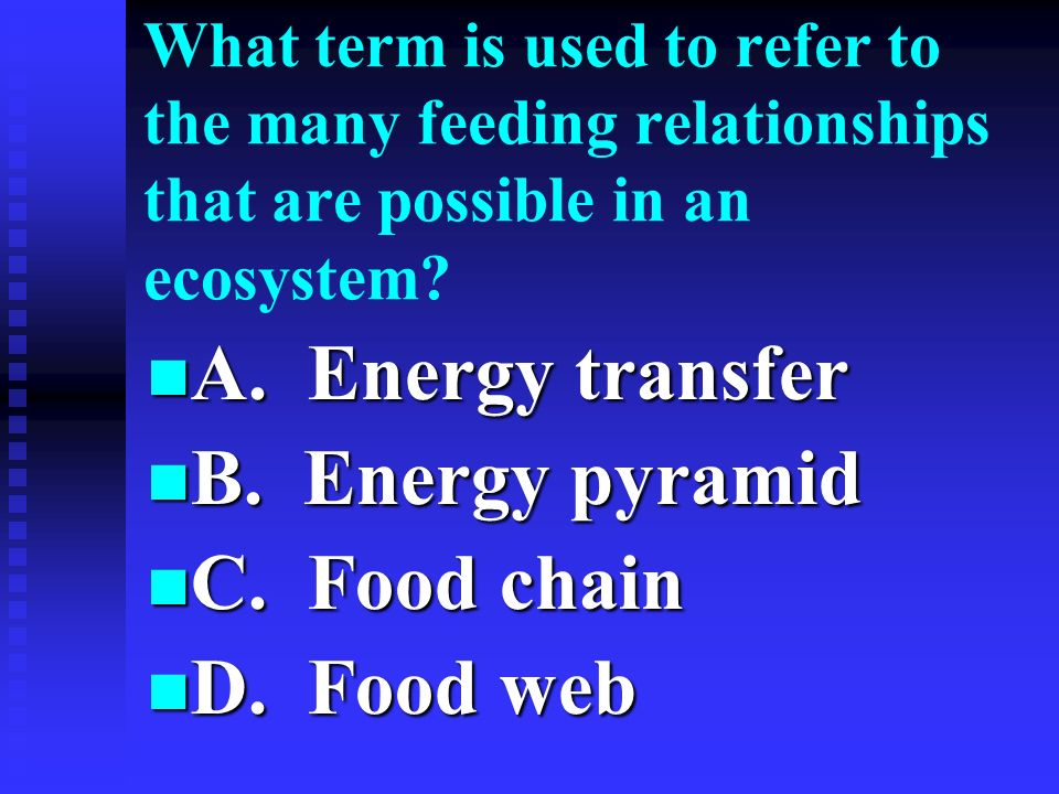 A. Energy transfer B. Energy pyramid C. Food chain D. Food web