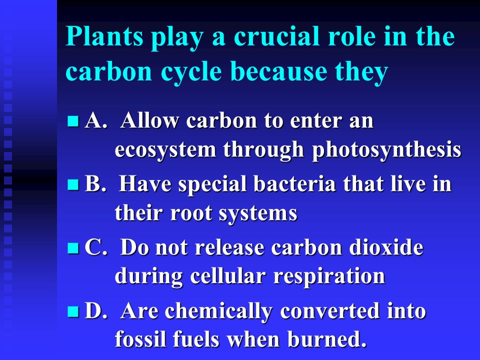 Plants play a crucial role in the carbon cycle because they