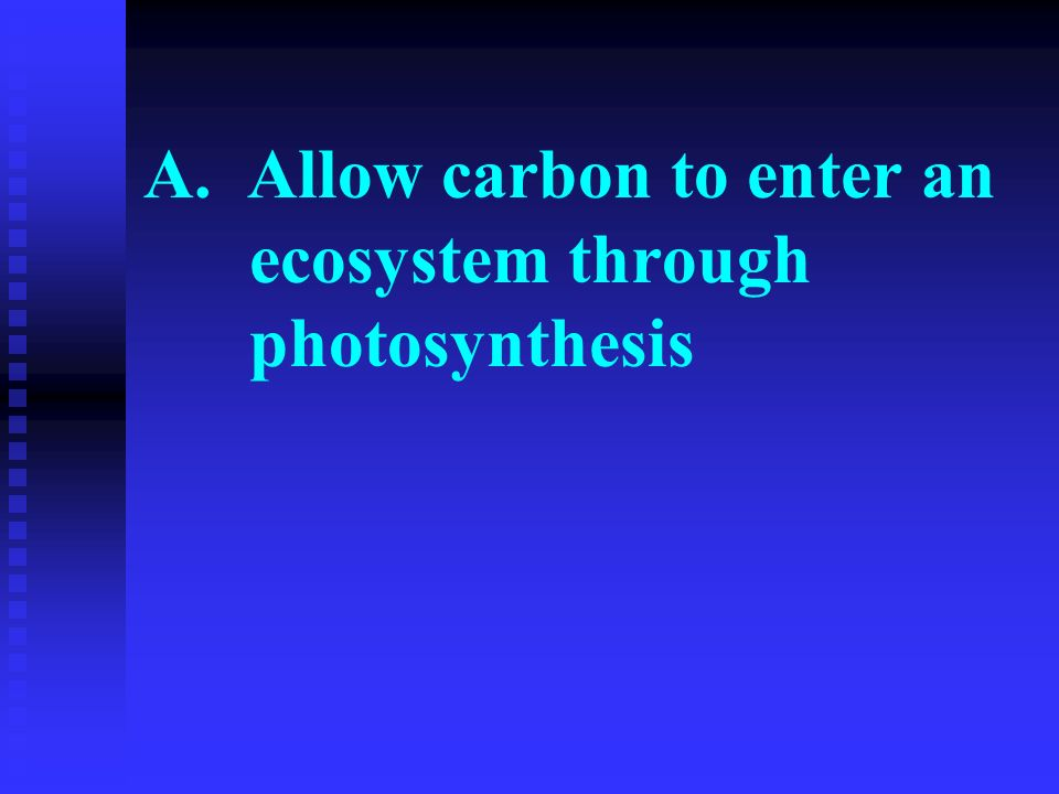 A. Allow carbon to enter an ecosystem through photosynthesis