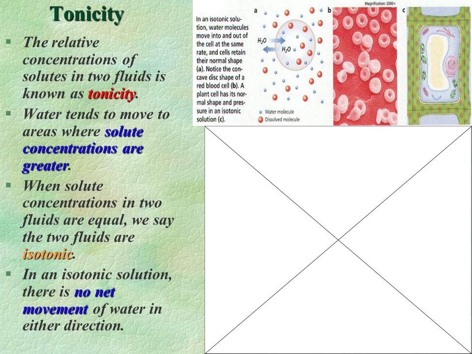Tonicity The relative concentrations of solutes in two fluids is known as tonicity.