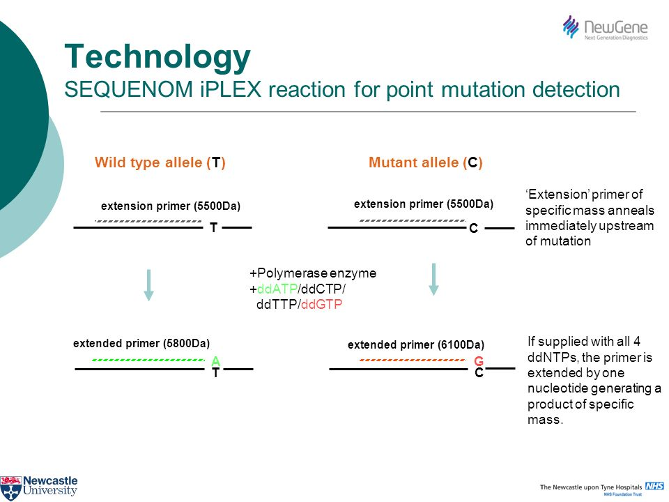 Technology SEQUENOM iPLEX reaction for point mutation detection