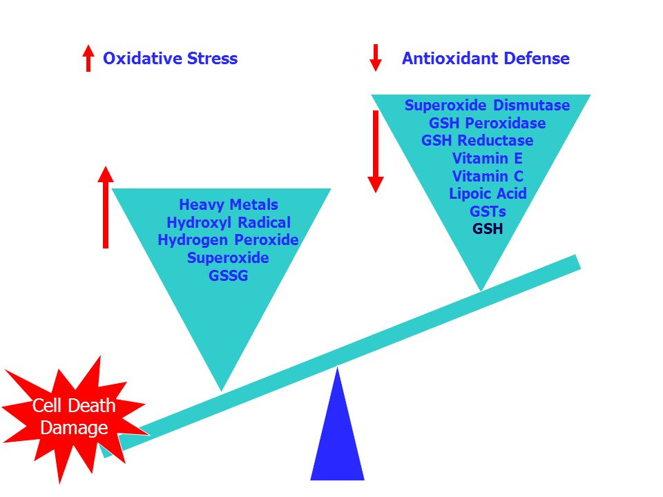 Cell Death Damage Oxidative Stress Antioxidant Defense