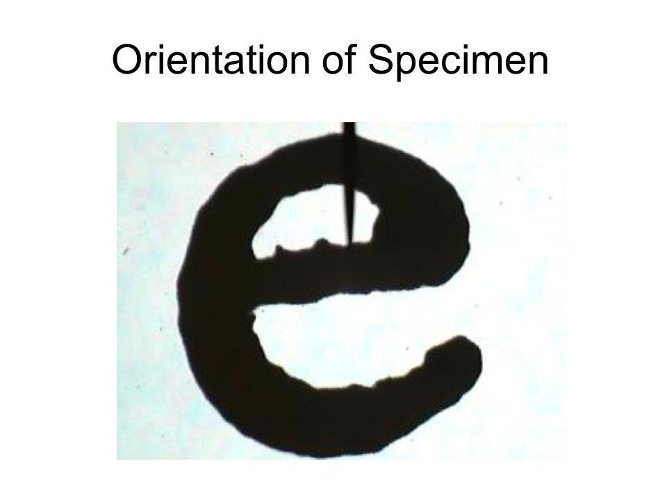 Orientation of Specimen