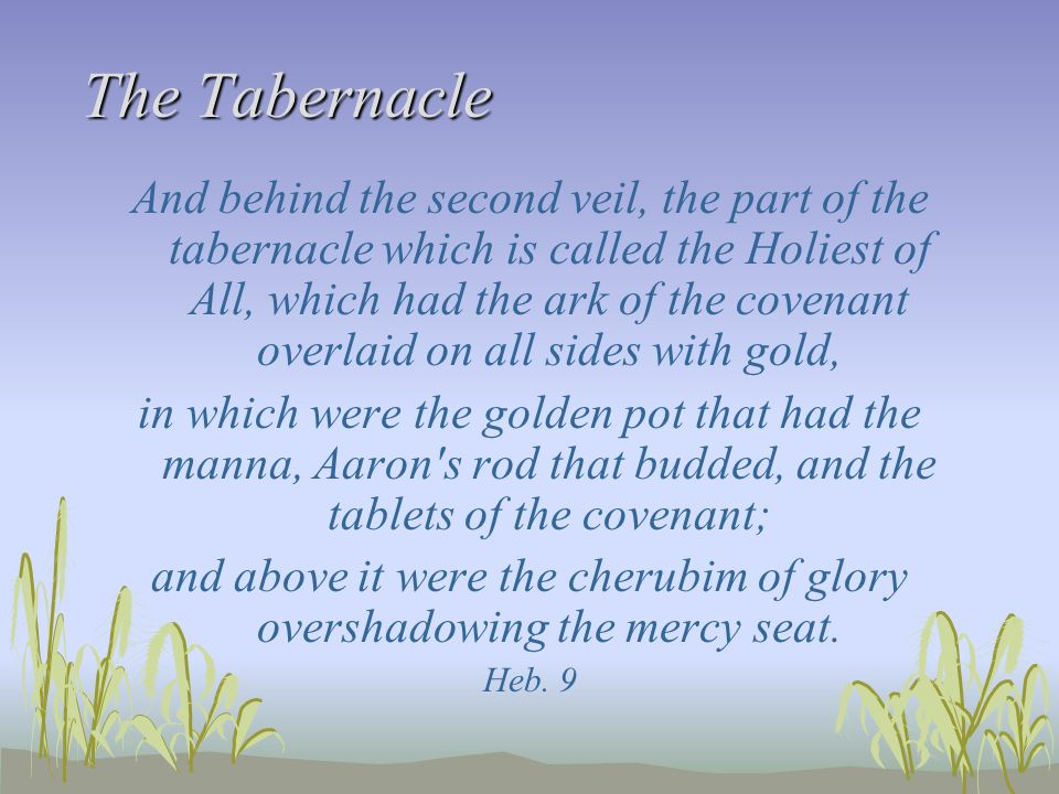 and above it were the cherubim of glory overshadowing the mercy seat.