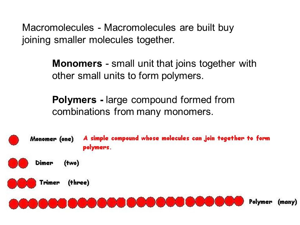 Macromolecules - Macromolecules are built buy joining smaller molecules together.