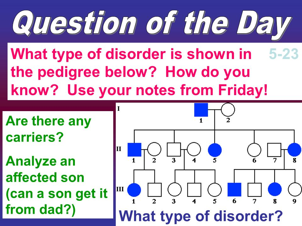 Question of the Day What type of disorder is shown in the pedigree below How do you know Use your notes from Friday!
