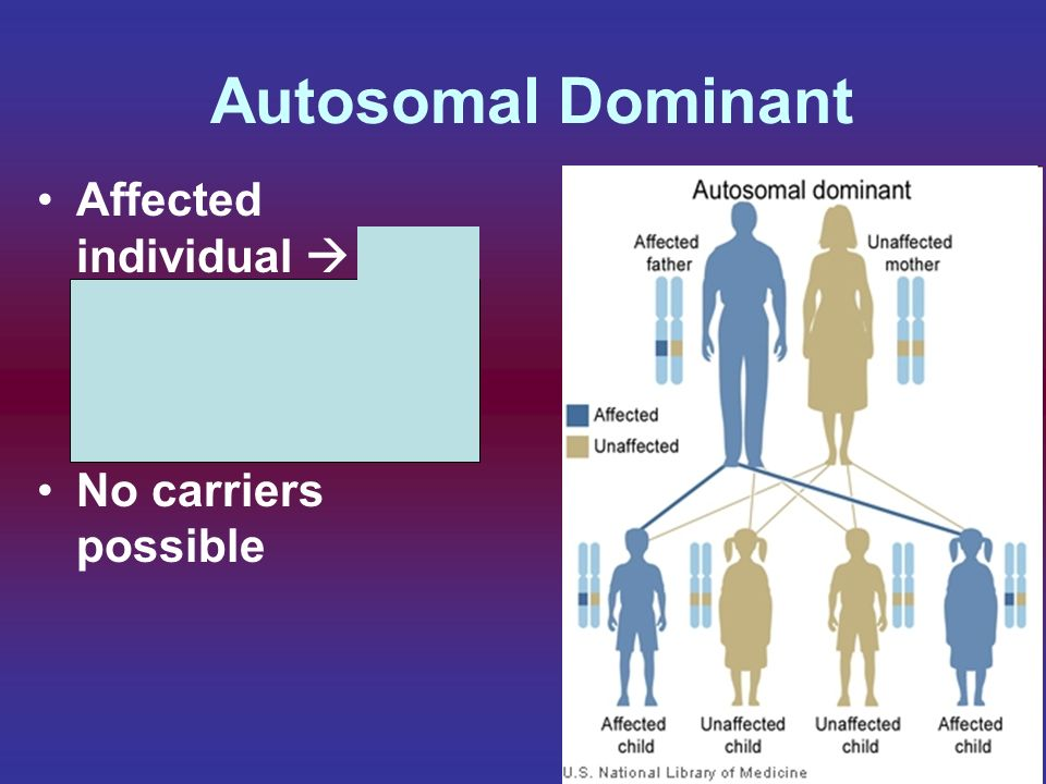 Autosomal Dominant Affected individual  50 / 50 chance of producing affected children.