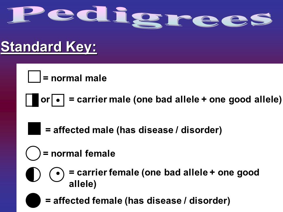 Pedigrees Standard Key: = normal male or